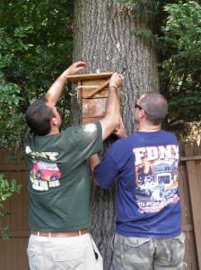 Ralph Hangs Squirrel House