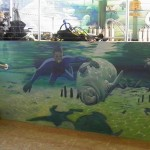 American Pro Dive mural of diver petting manatee on dive classroom