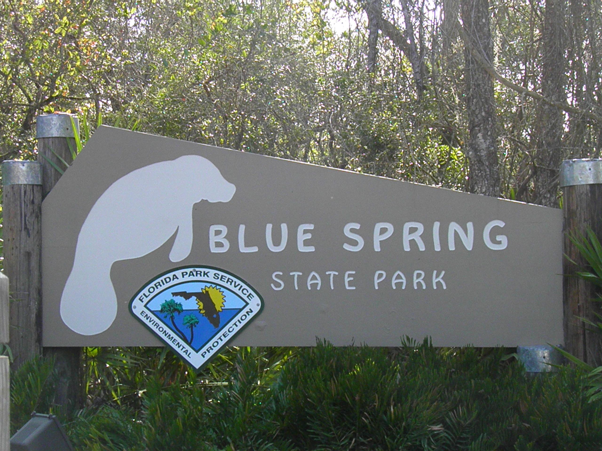 Blue Springs State Park Animaltourism News