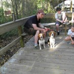 Blue Springs State Park -- can bring dogs everywhere but right by the manatees