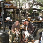 Crab Shack, Tybee Island, GA -- dog friendly, also a cat sanctuary