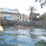 American Pro Dive manatee dive site