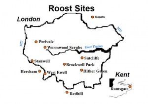 map of london ring-necked parrot roost sites