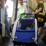 Dogs on LIRR