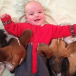 beagles and baby