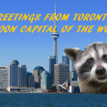 raccoon looms large on the Toronto skyline