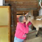 Carolyn kisses Suzy, the goat who roams the grounds