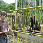 Miserable bear and customer at Hachimantai Bear Park