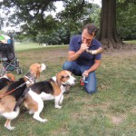 Huck, Moxie and Rocky are curious about the shofar Gideon is blowing