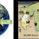 rhino map ol pejeta drone