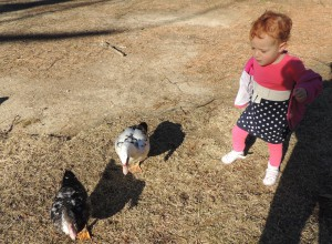 Baby girl with ducks at Duck Pond in Buckhead, Atlanta