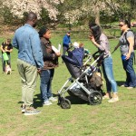 Cops give ticket to least threatening person in the park: a young mom pushing a stroller and attending a French bulldog meetup.